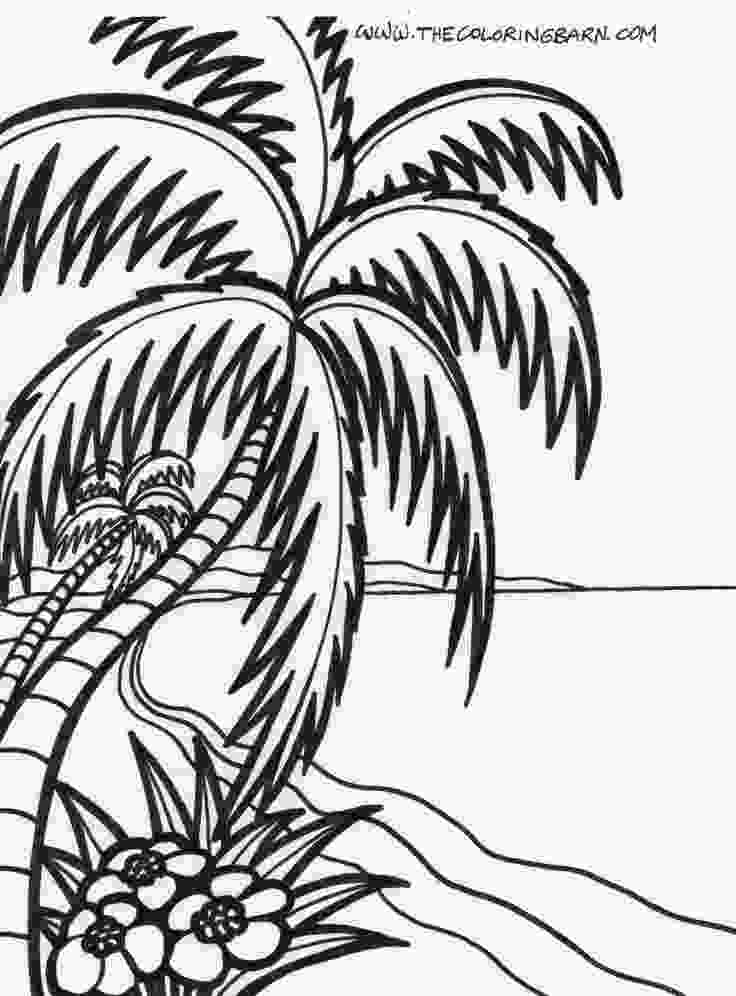 tropical coloring pages tropical silhouettes tropical silhouettes beach