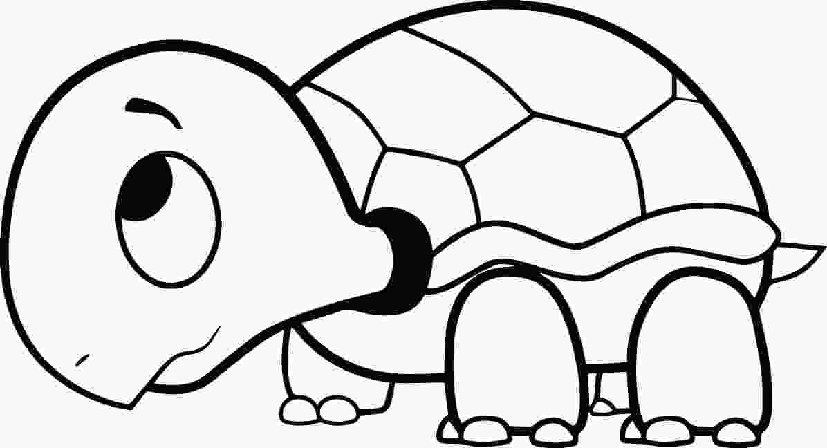turtle coloring turtle coloring pages the slow animals gianfredanet