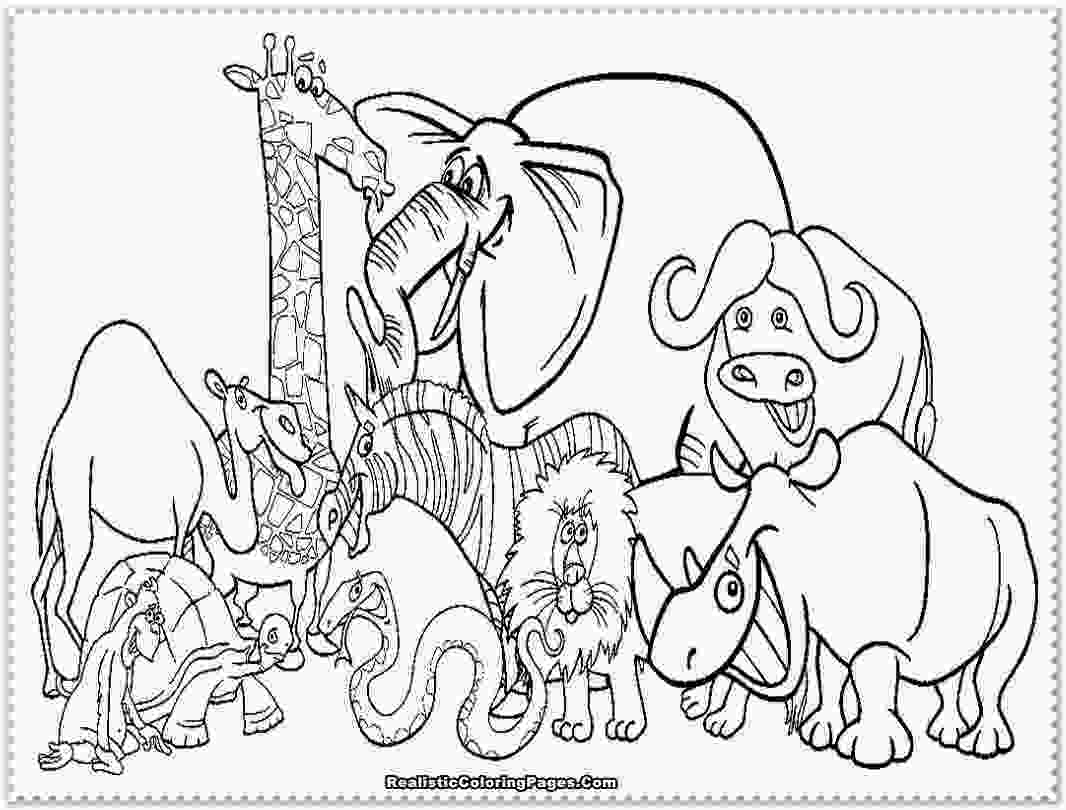 zoo coloring pictures cute zoo animals coloring pages high resolution