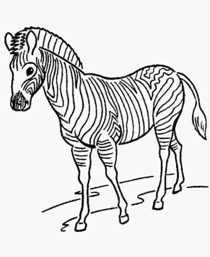 zoo coloring pictures zoo animal coloring page zebra with stripes zebra