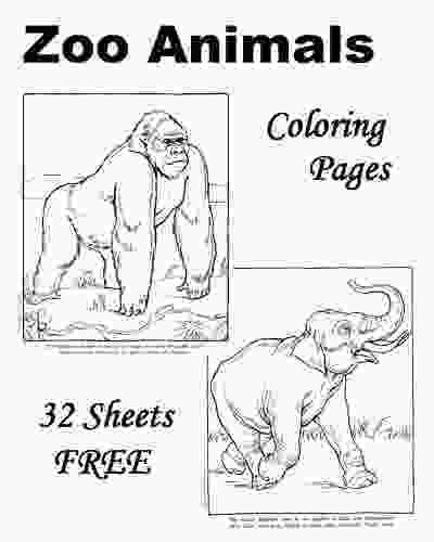 zoo coloring pictures zoo animal coloring pages wild and one pinterest