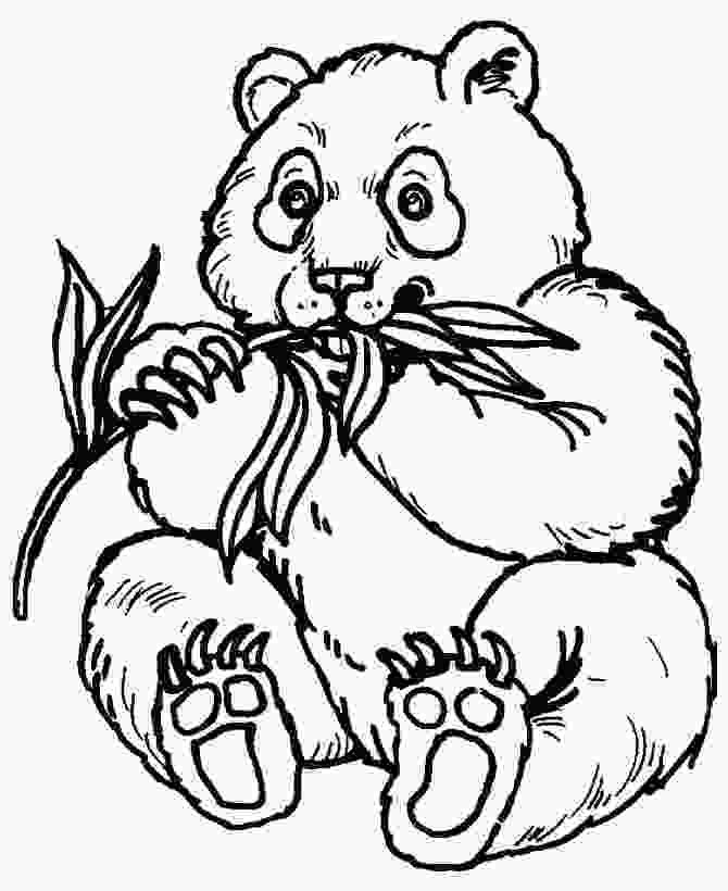 zoo coloring pictures zoo animals coloring pages best coloring pages for kids 1