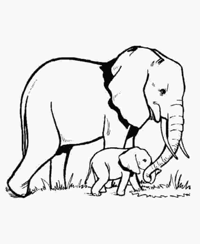 baby elephant coloring page elephant and baby coloring page
