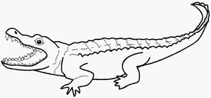 cartoon alligator crocodile drawing outline clipart panda free clipart