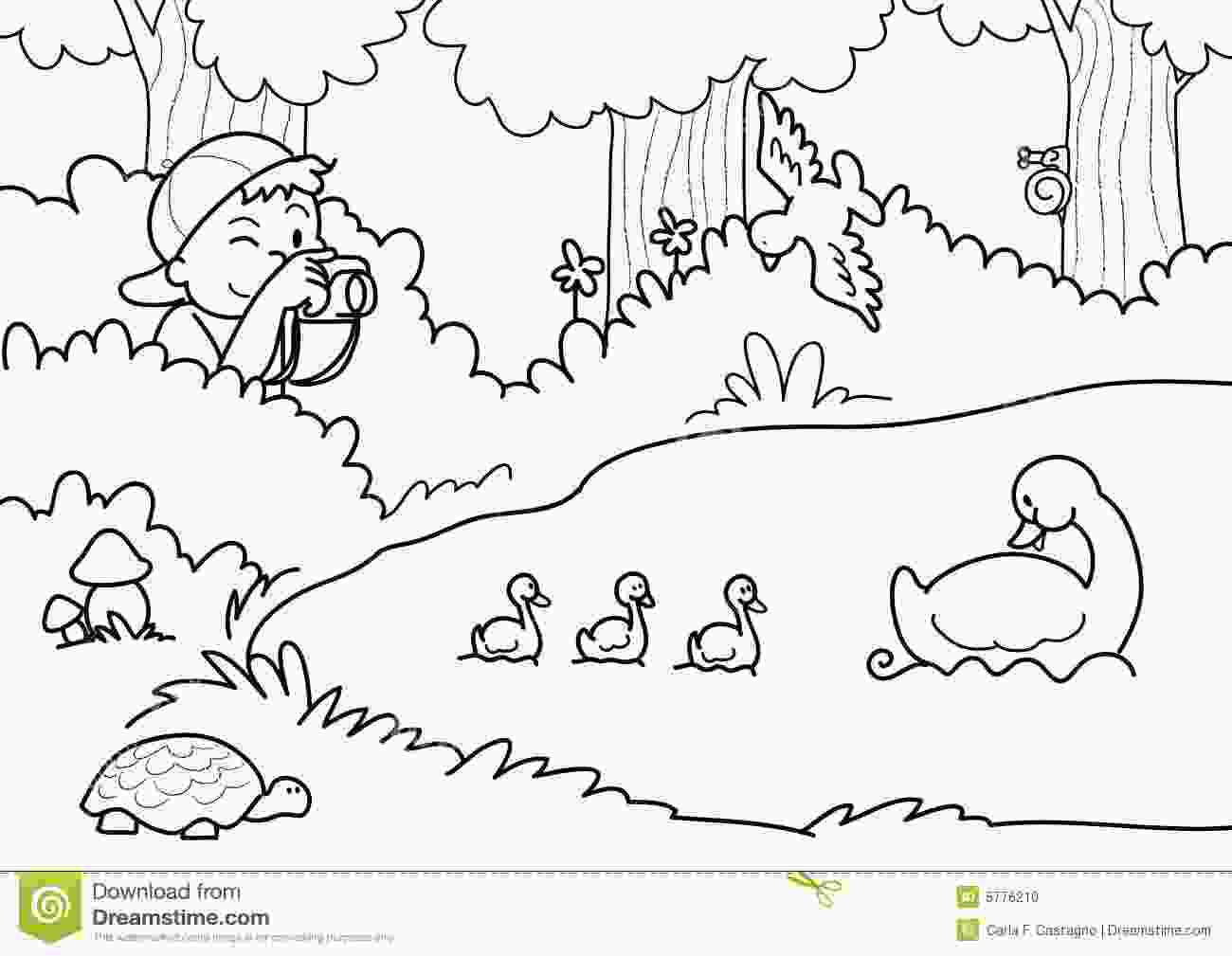 coloring nature pictures shooting nature coloring vector stock vector