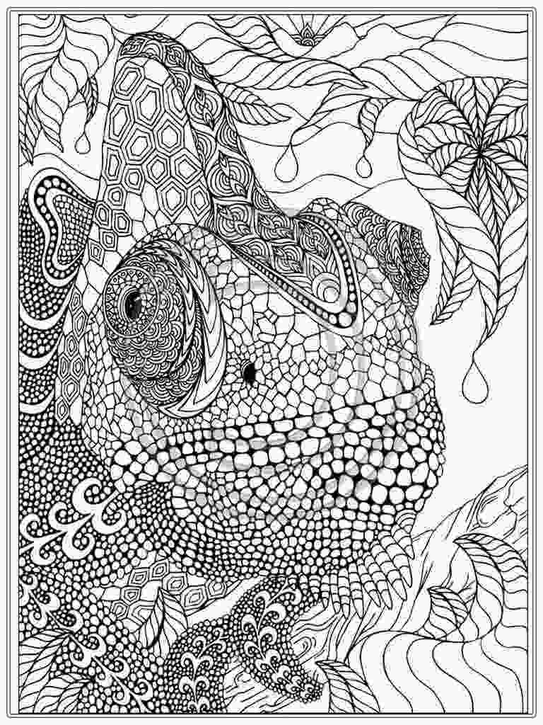 coloring sheet adults adult coloring page coloring home