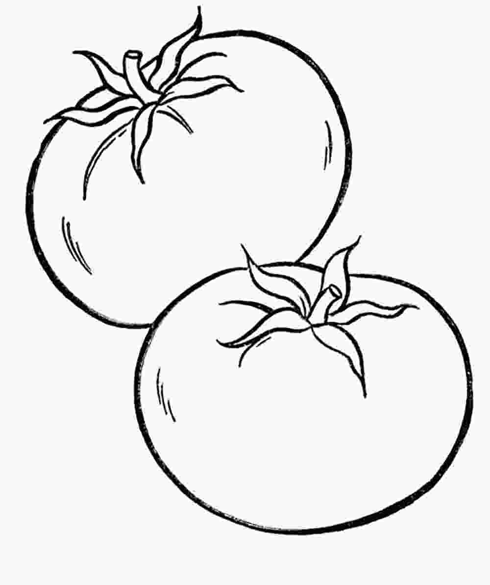 coloring tomato vegetables tomato vegetable coloring pages