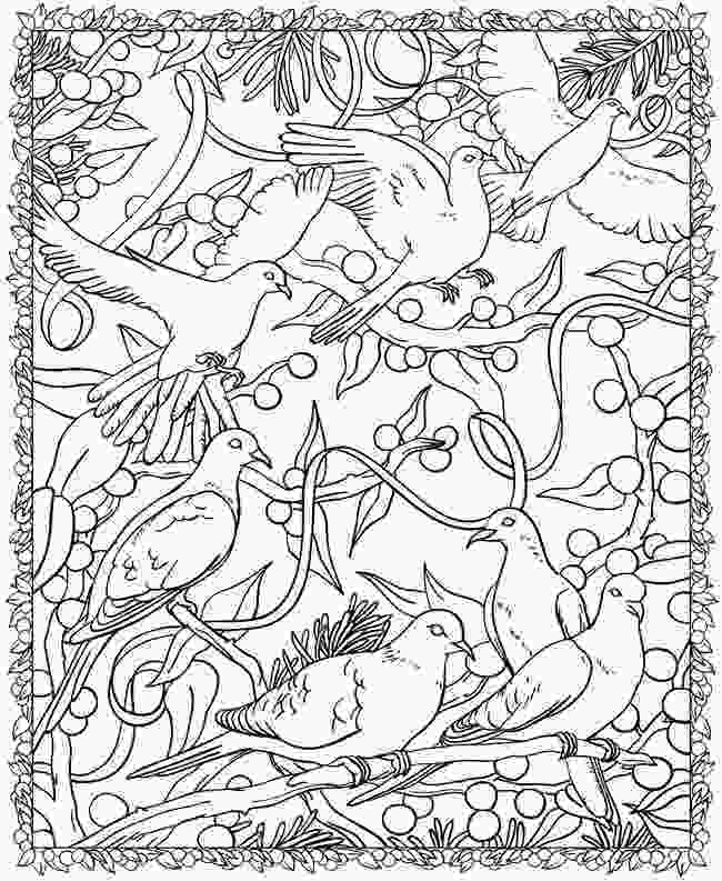 free printable coloring books dover coloring pages to download and print for free