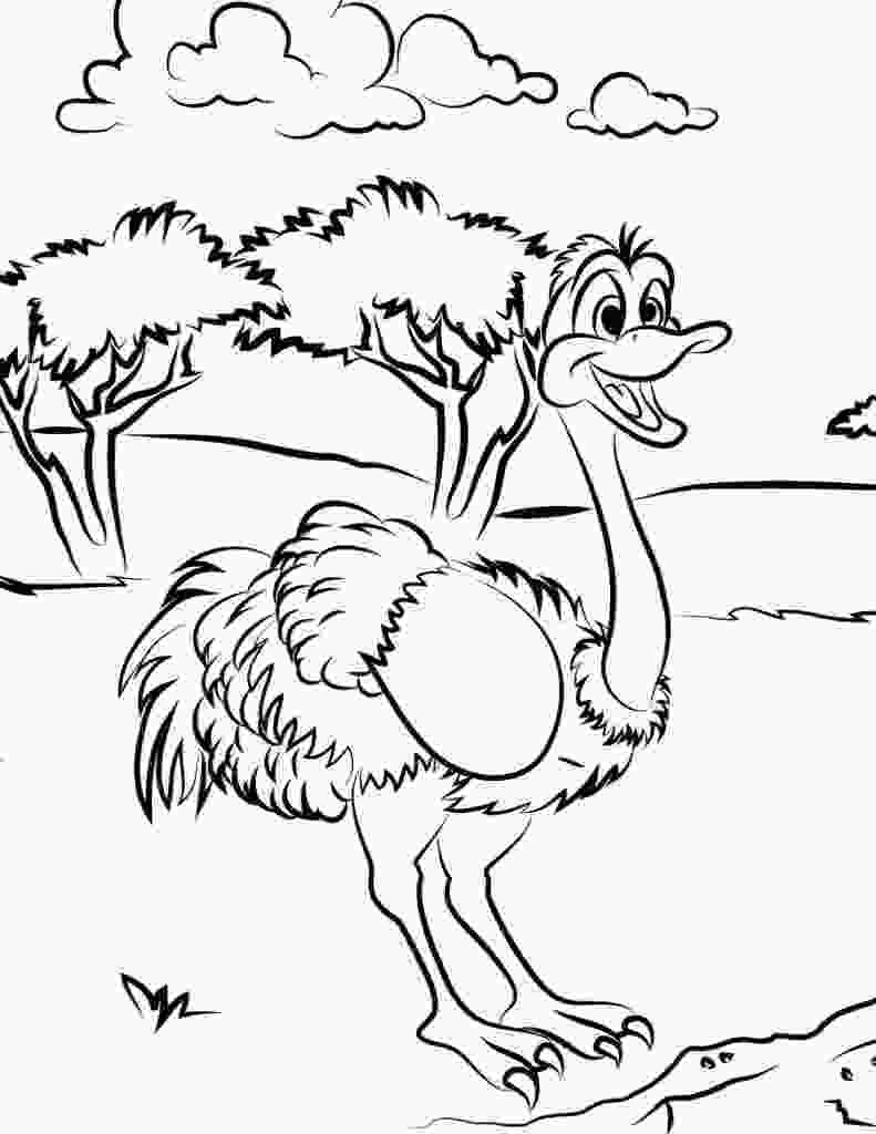 kids coloring print free printable ostrich coloring pages for kids