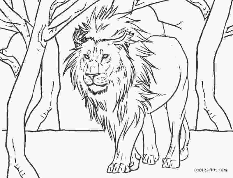 pictures of lions to color free printable lion coloring pages for kids cool2bkids