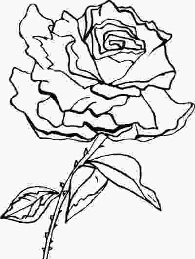 rose colouring coloring pages of flowers and hearts studentdrivers