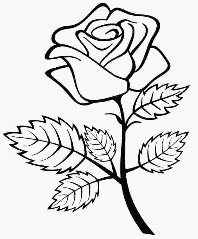 rose colouring free printable roses coloring pages for kids 2 just