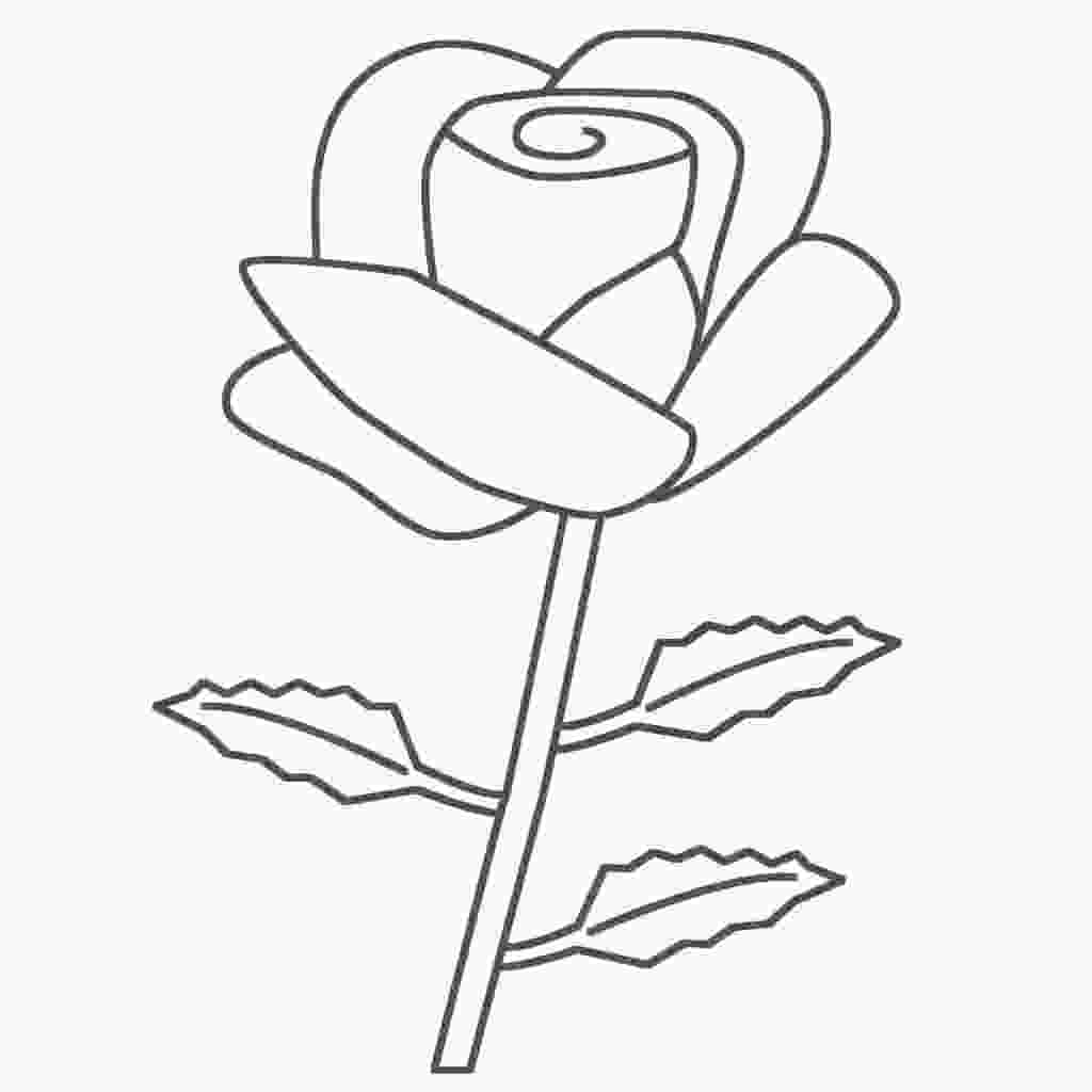 rose colouring free printable roses coloring pages for kids