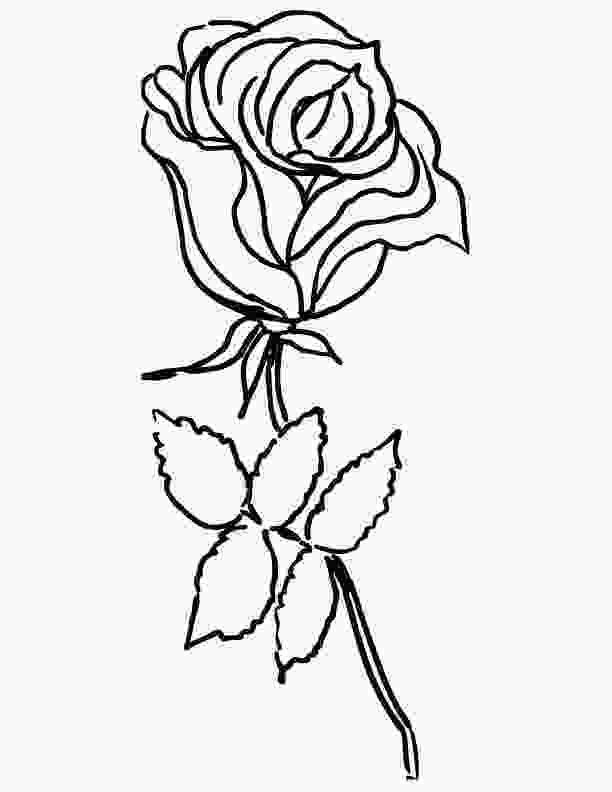rose colouring only roses coloring pages