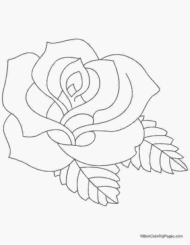 rose colouring rose coloring pages 2