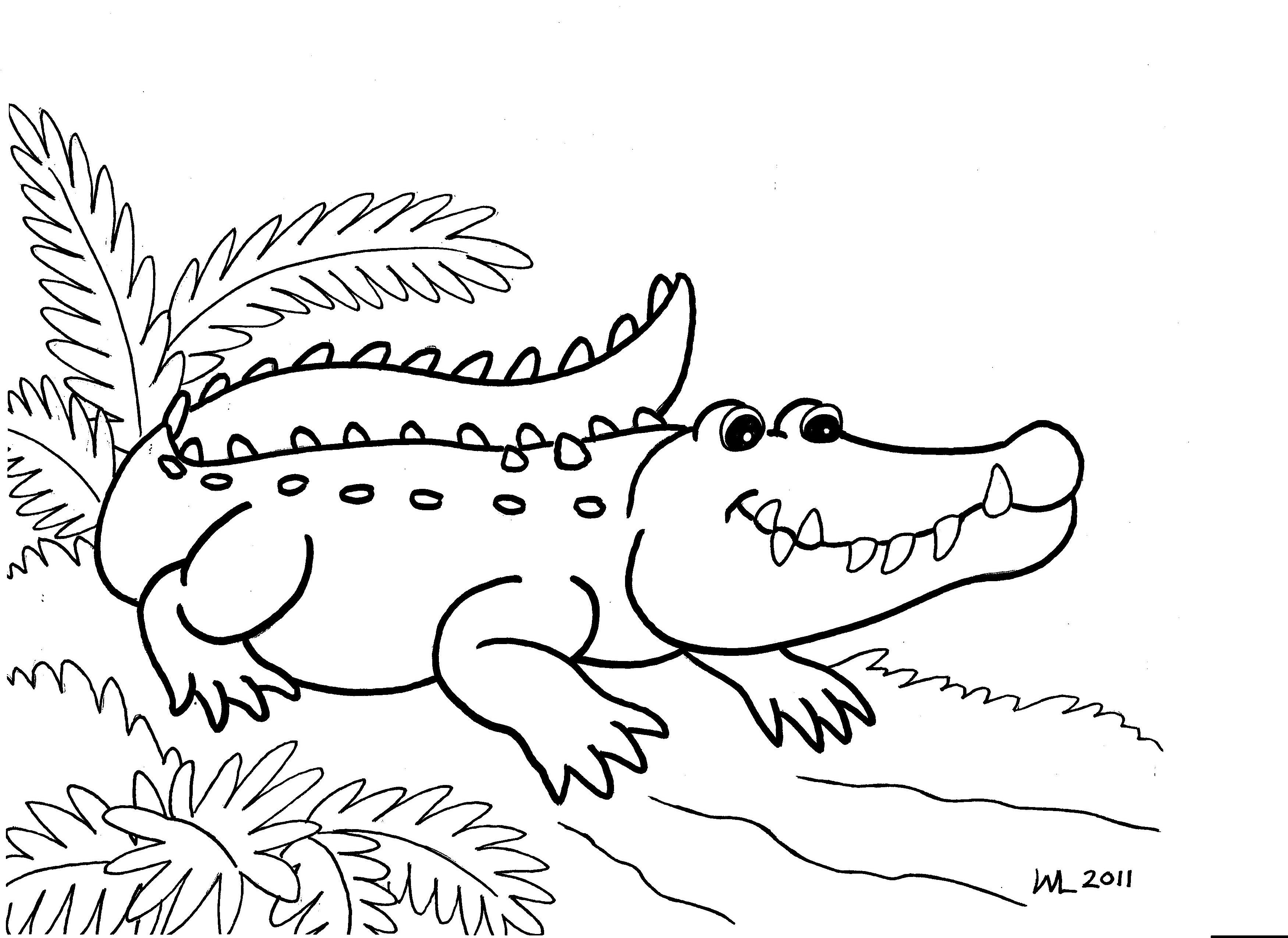 alligator coloring page coloring pages for girls printable alligator coloring page page coloring alligator