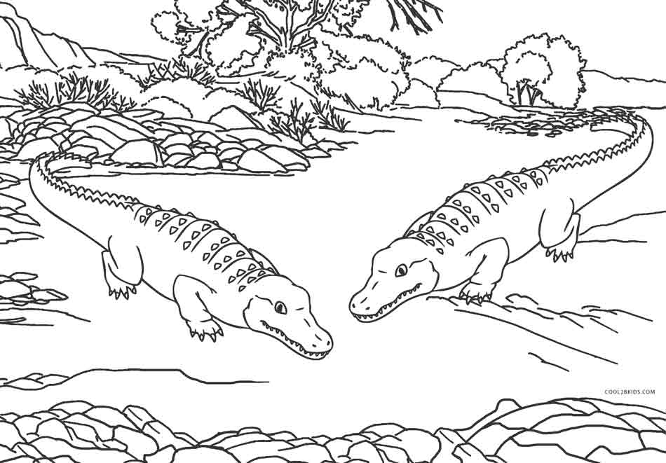 alligator coloring page free coloring pages crocodiles coloring page alligator