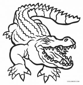 alligator coloring page free printable alligator coloring pages for kids cool2bkids coloring alligator page 1 2