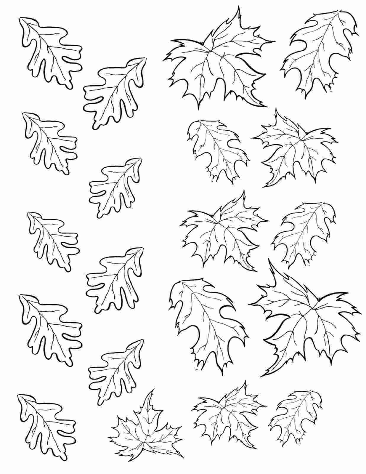 coloring pages leaves bird on a cake november 2011