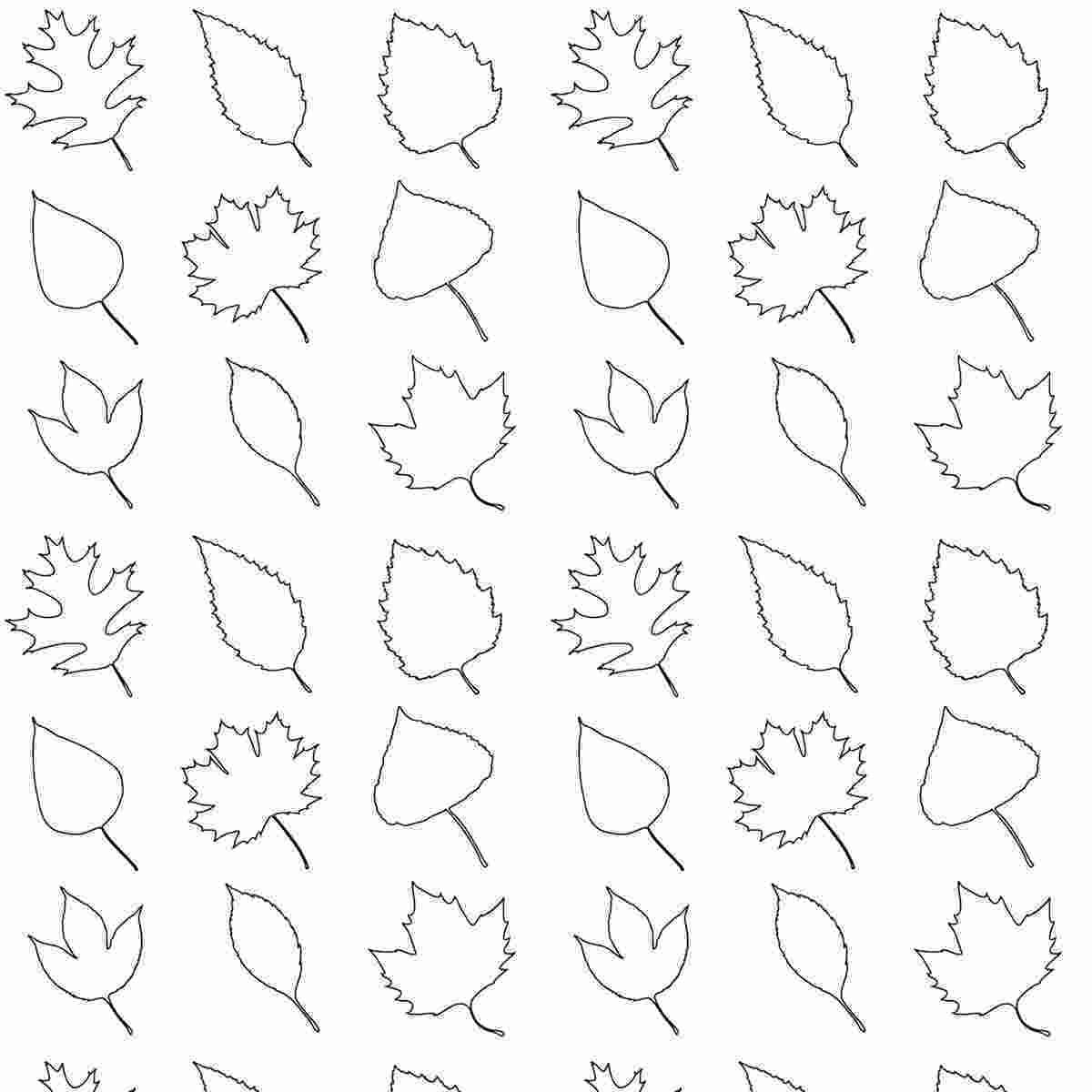 coloring pages leaves free printable leaves coloring pattern paper
