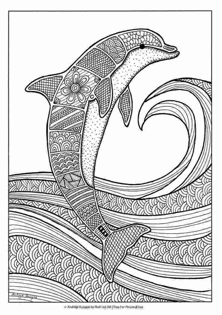 dolphin colouring in pictures 25 b228sta id233erna om colouring pages p229 pinterest adult