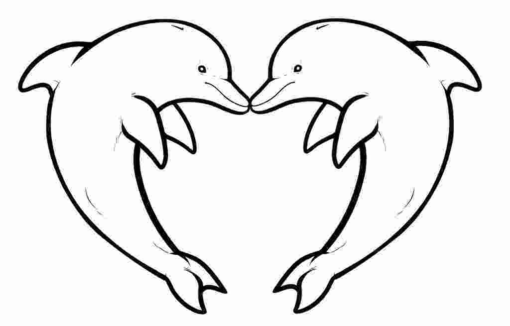 dolphin colouring in pictures free printable dolphin pictures download free clip art 1