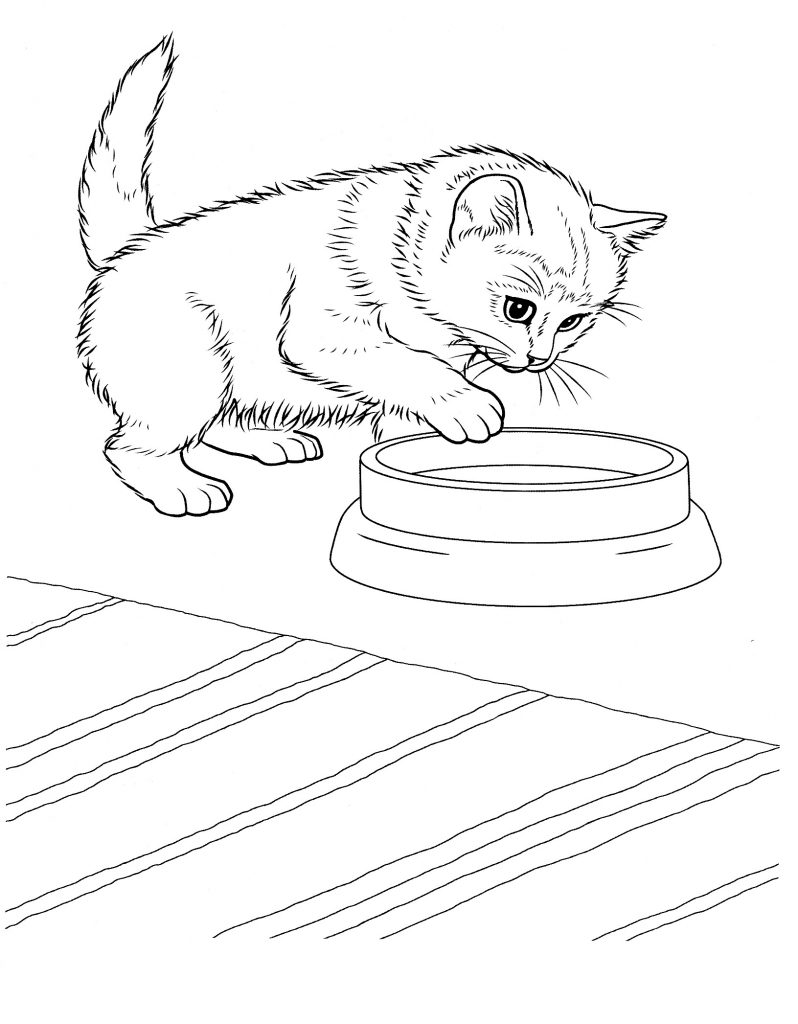 free coloring pages of kittens free printable cat coloring pages for kids pages coloring of kittens free