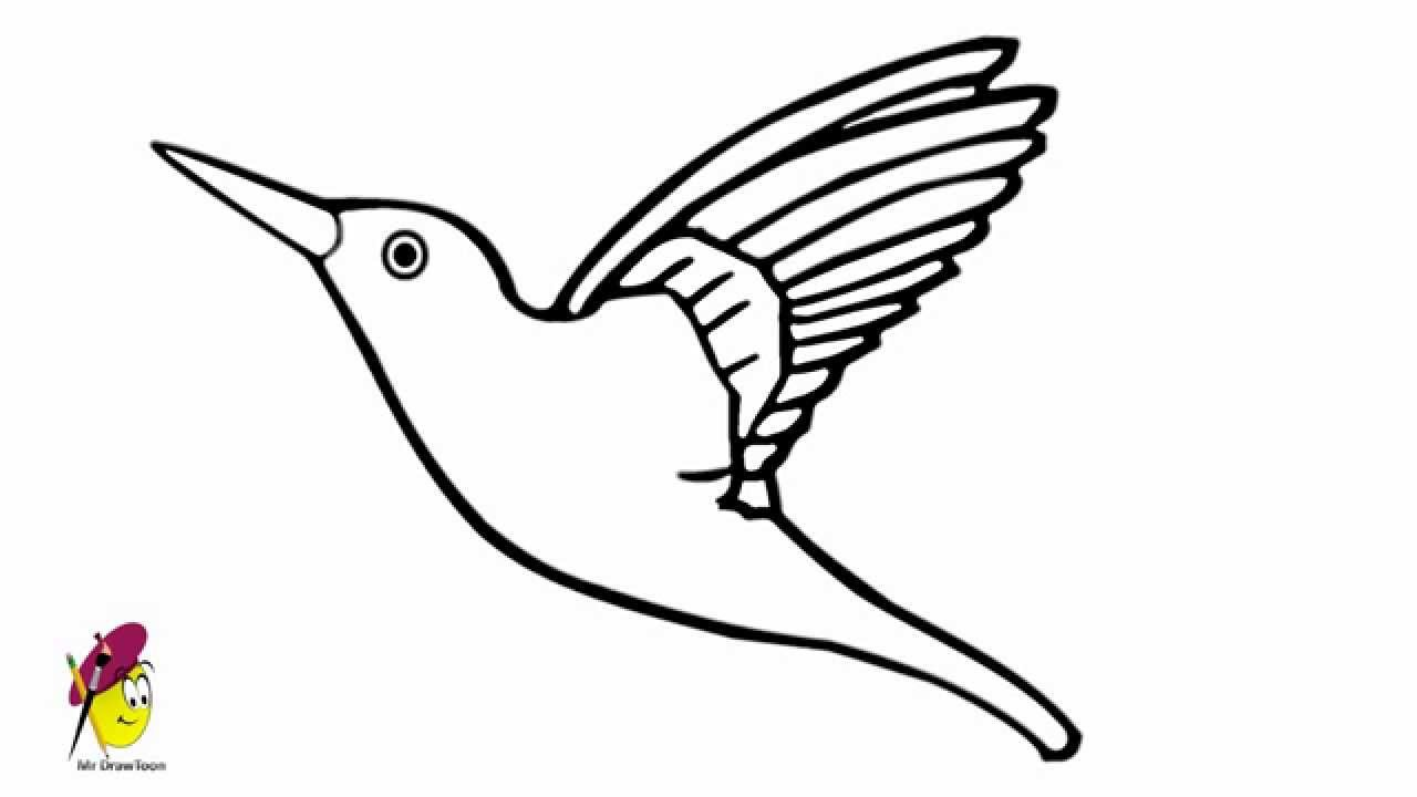 how to draw a california quail step by step animals quail printable coloring pages for kids draw how step quail a by california step to