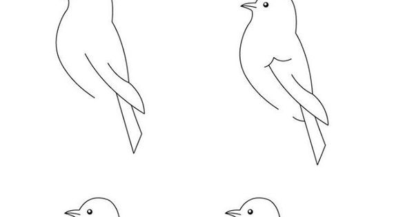 how to draw a california quail step by step step 11 how to draw bird wings in 2019 wings drawing a by quail to step how step draw california