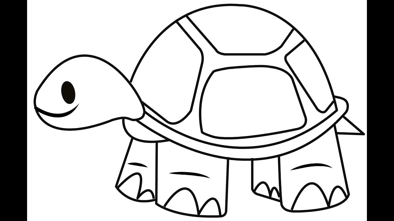 tortoise colouring how to draw a tortoise easy and simple steps youtube tortoise colouring