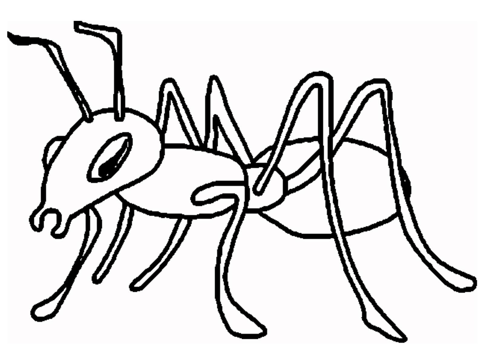 ants coloring pages ant drawing for kids clipartsco pages ants coloring