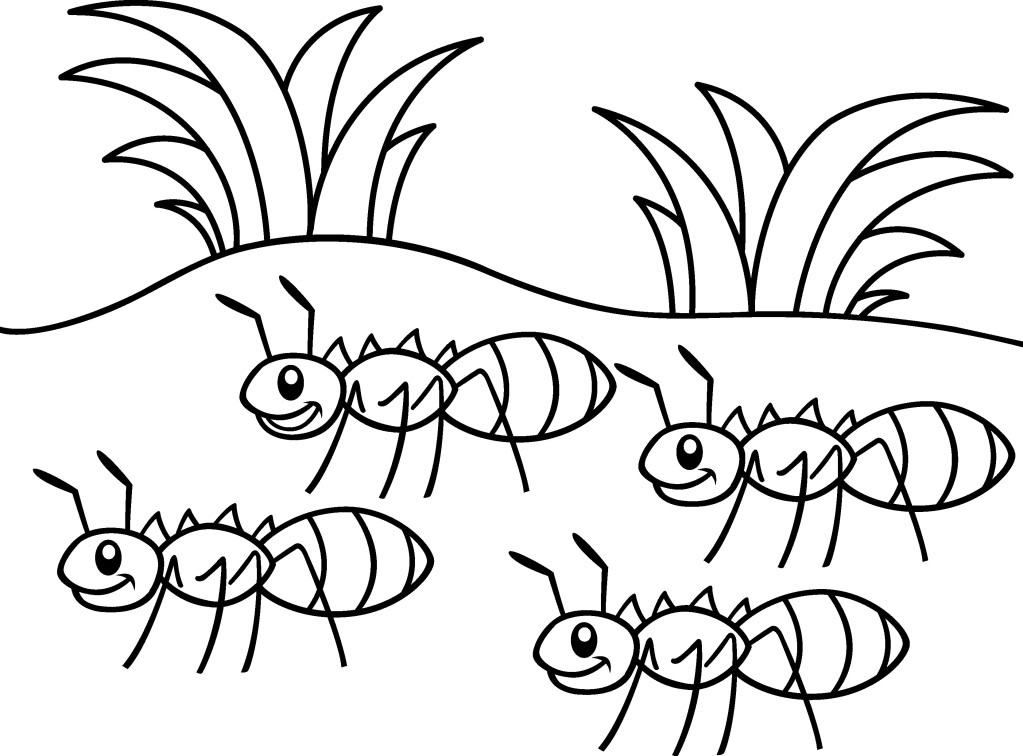 ants coloring pages ant drawing for kids under town coloring pages ants