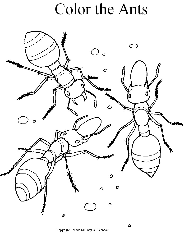 ants coloring pages ants marching coloring pages download and print for free coloring ants pages