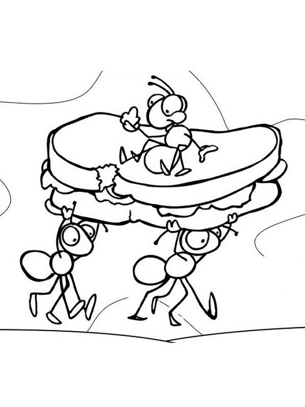 ants coloring pages free printable ant coloring pages for kids coloring pages ants