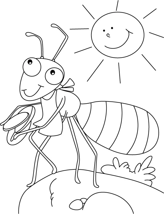 ants coloring pages smiling baby ants coloring pages best place to color pages coloring ants