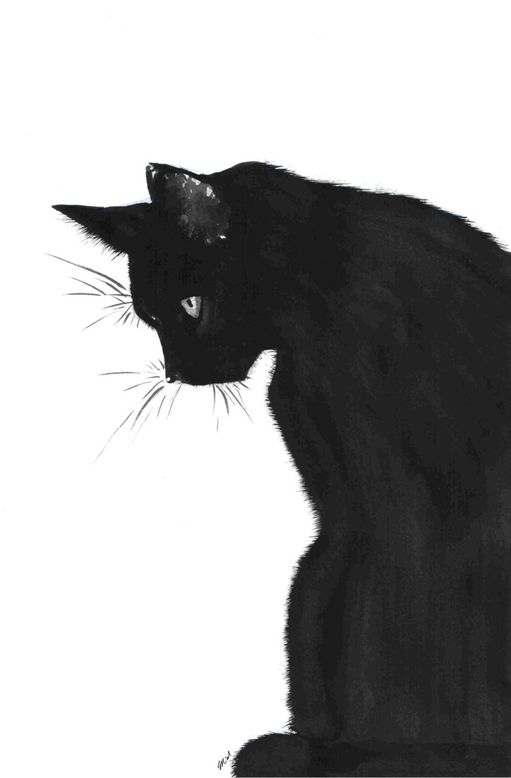 black cat drawing how to draw a black cat Как нарисовать черного кота black cat drawing
