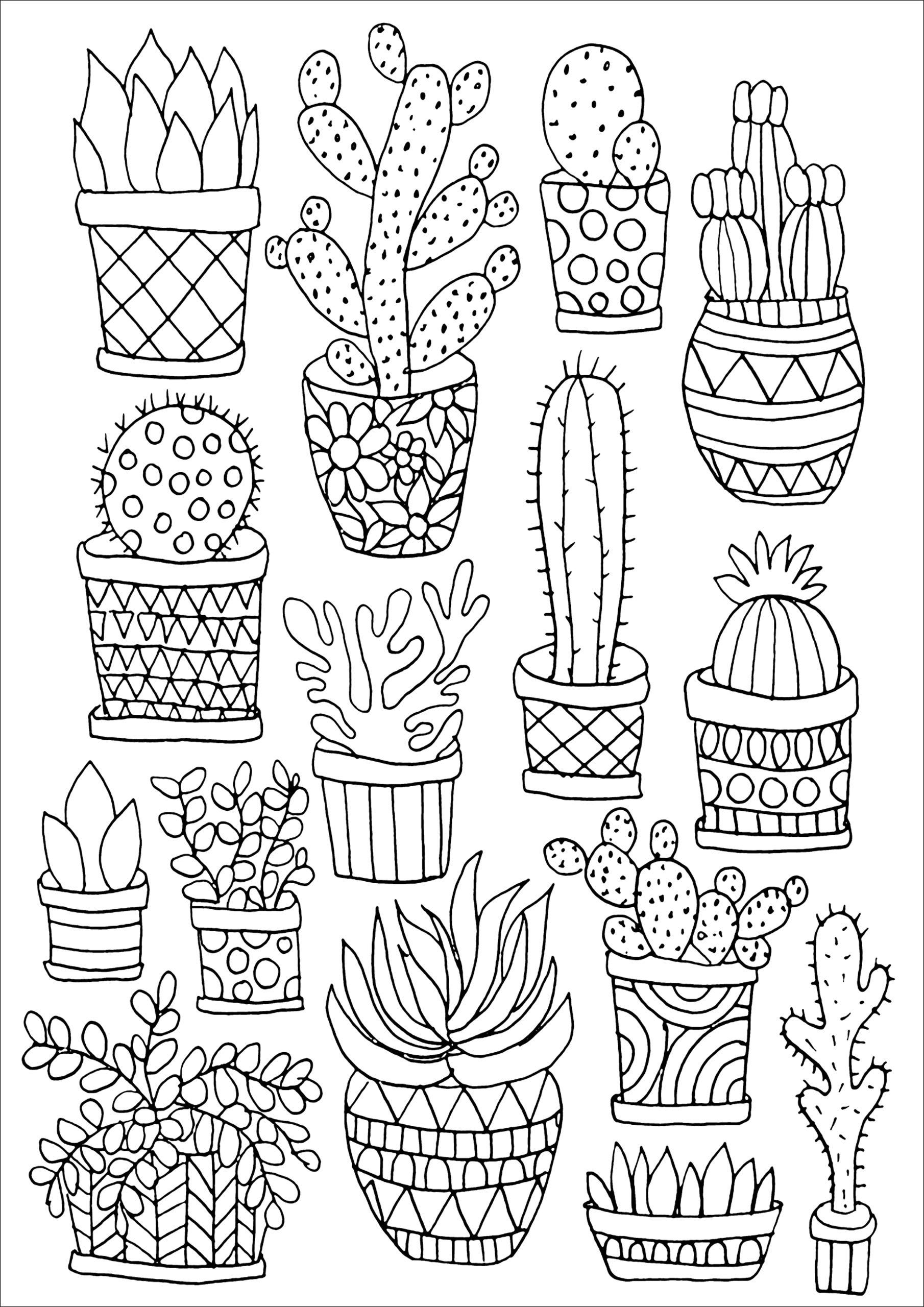 coloring pages of cactus free printable cactus coloring pages for kids of coloring pages cactus