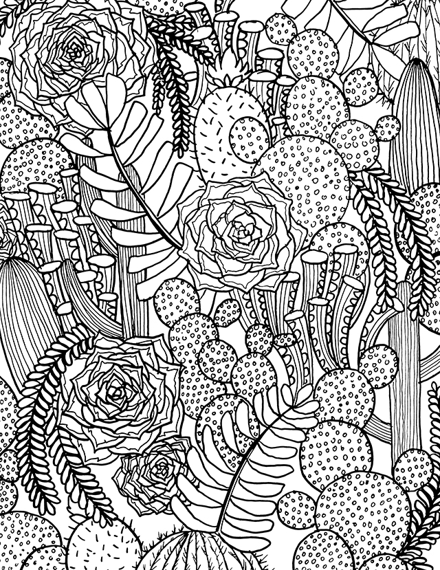 coloring pages of cactus free printable cactus coloring pages for kids pages cactus of coloring