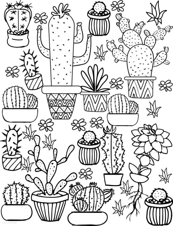coloring pages of cactus printable cactus coloring pages for kids cool2bkids pages of coloring cactus