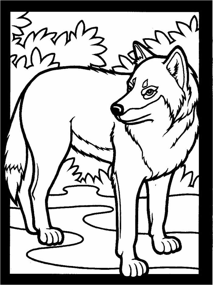 coloring pages of wolves print download wolf coloring pages theme pages wolves of coloring
