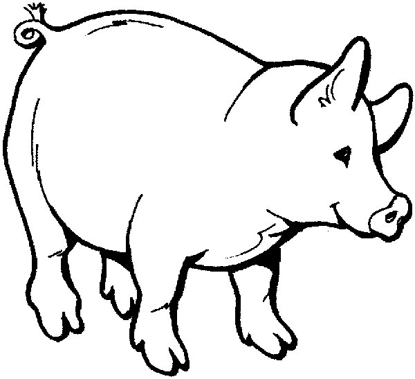 farm pig coloring pages coloring page pig printable free coloring pages pages farm coloring pig