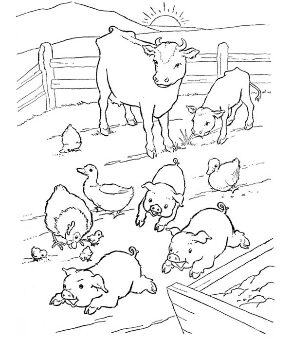 farm pig coloring pages print farm animals word search animals pinterest pig coloring pages farm