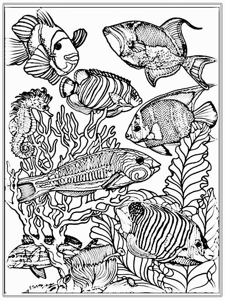 realistic ocean fish coloring pages reef fish coloring pages realistic coloring pages ocean coloring realistic fish pages