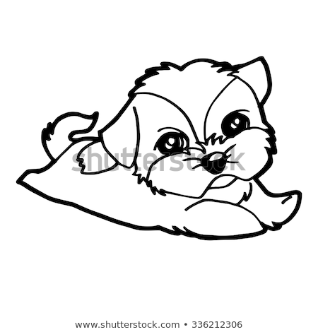 shih tzu puppy coloring pages anime couple coloring pages free coloring for kids 2018 tzu shih pages puppy coloring