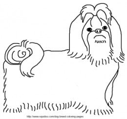 shih tzu puppy coloring pages pet coloring pages tzu shih coloring puppy pages