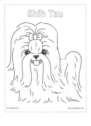 shih tzu puppy coloring pages pin em vector images shih tzu puppy pages coloring