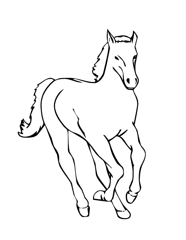 baby horse coloring pages baby horse coloring pages coloring pages to download and coloring horse baby pages