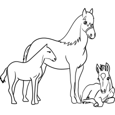 baby horse coloring pages baby horse coloring pages horse baby horse running horse coloring baby pages