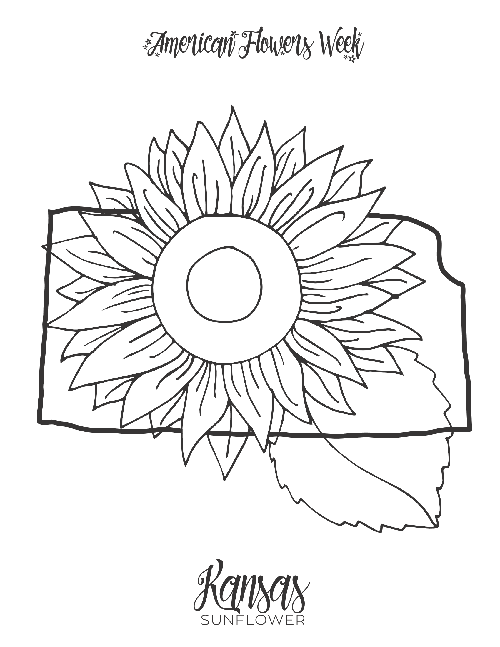 california state flower 50 state flowers free coloring pages american flowers week flower state california