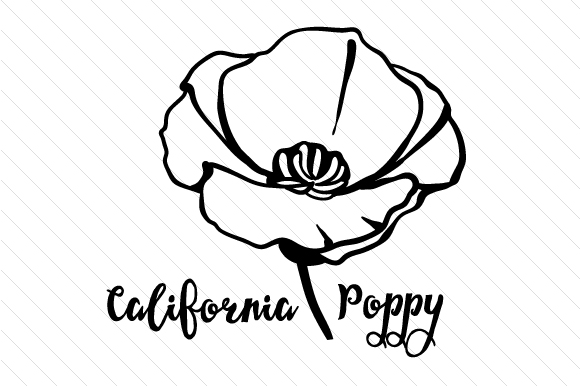 california state flower state flower coloring pages woo jr kids activities flower california state
